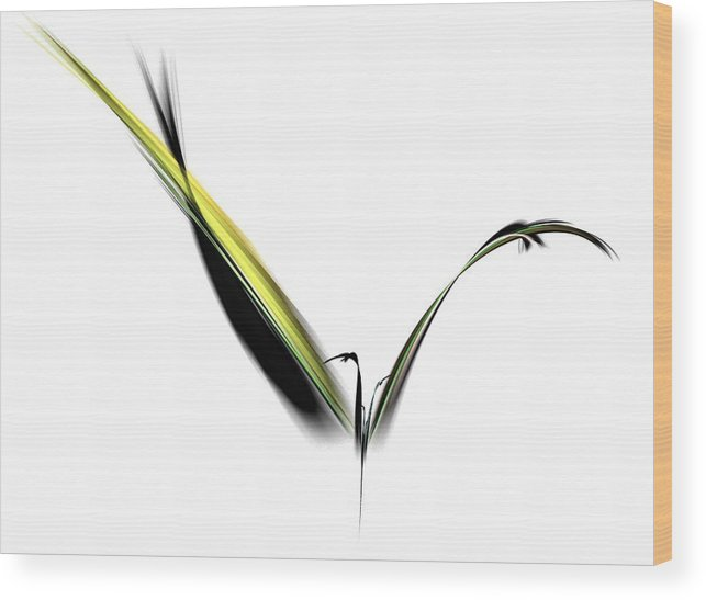 Avian Wood Print featuring the digital art Avian Zen - Fractal Art by NirvanaBlues