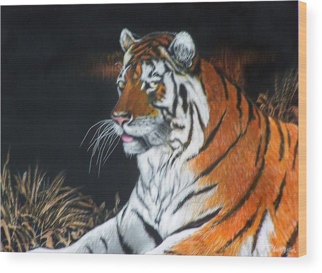 Scratchboard Wood Print featuring the painting Bengal Boy Sold by Jack Bolin