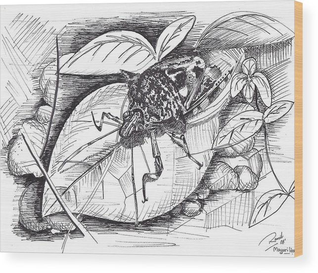 Bugs Wood Print featuring the drawing Bugs by Ramiliano Guerra
