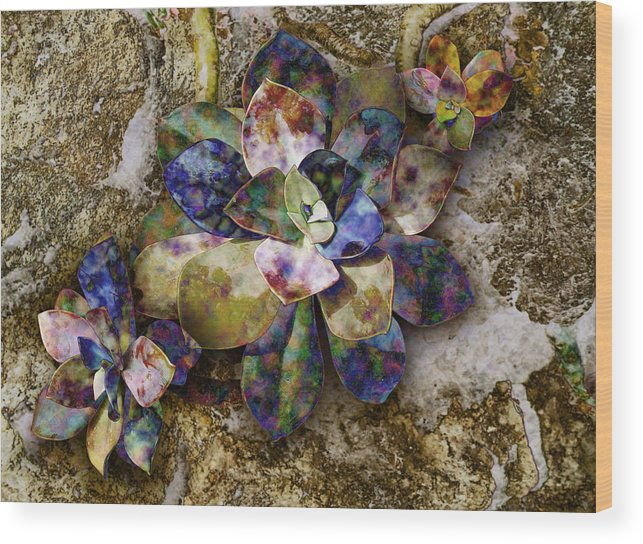Plant Wood Print featuring the digital art Chicks N Hen by Gae Helton
