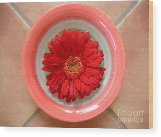 Nature Wood Print featuring the photograph Gerbera Daisy - Bowled On Tile by Lucyna A M Green