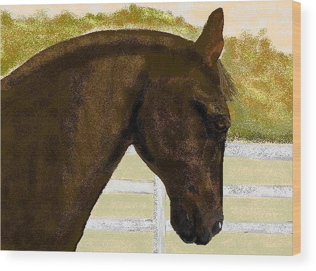 Horse Wood Print featuring the digital art Golden Chance by Carole Boyd