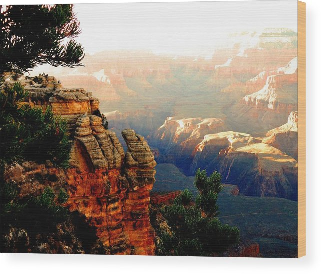 Canyon Wood Print featuring the photograph Grand Canyon by Barbara Angle