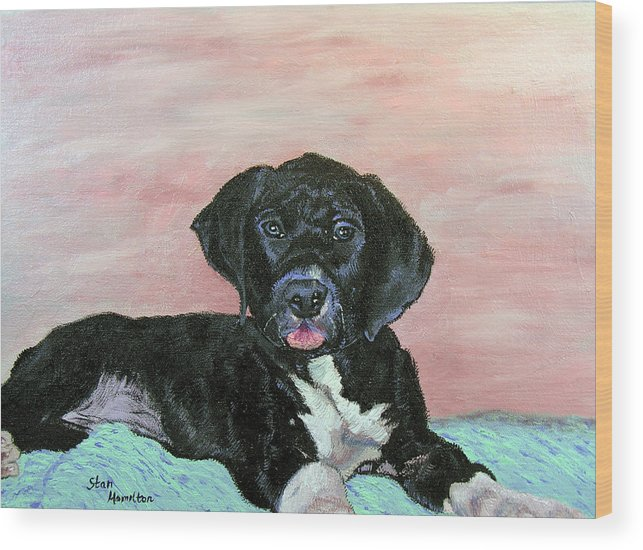 Dog Portrait Wood Print featuring the painting Gypsy by Stan Hamilton