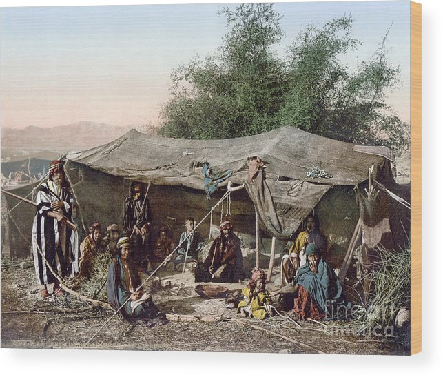 1890s Wood Print featuring the photograph Holy Land: Bedouin Camp by Granger