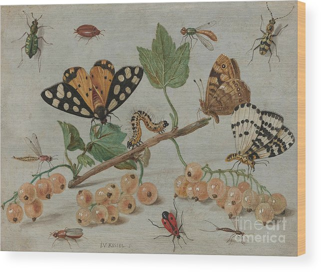 Flemish Wood Print featuring the painting Insects And Fruit, by Jan Van Kessel