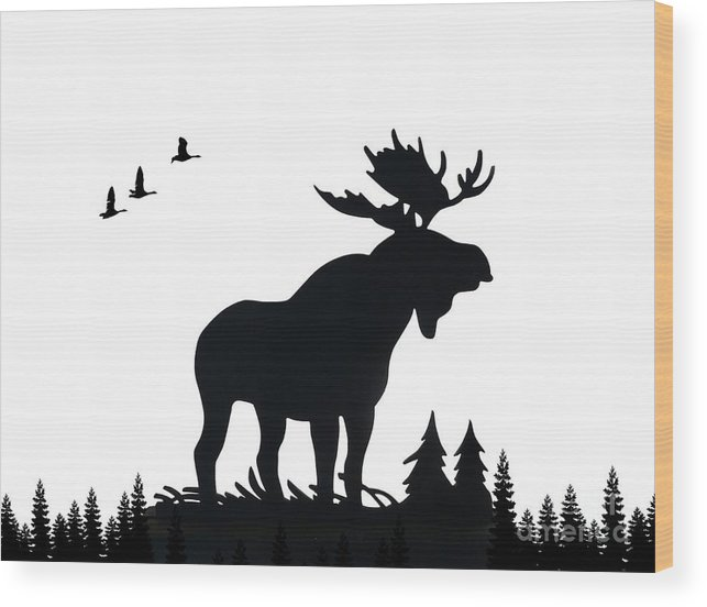 Moose Wood Print featuring the photograph Moose Nature by Anthony Djordjevic