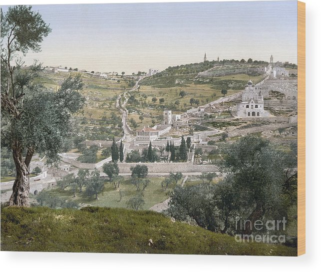 1900 Wood Print featuring the photograph Mount Of Olives, C1900 by Granger