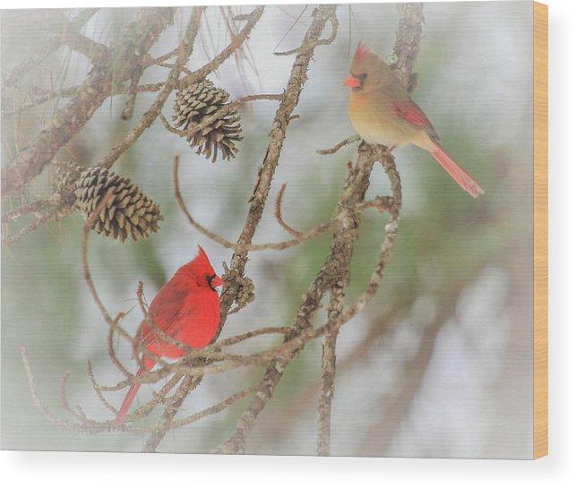 Cardinal Wood Print featuring the photograph Pair Of Cardinals by Reecie Steadman