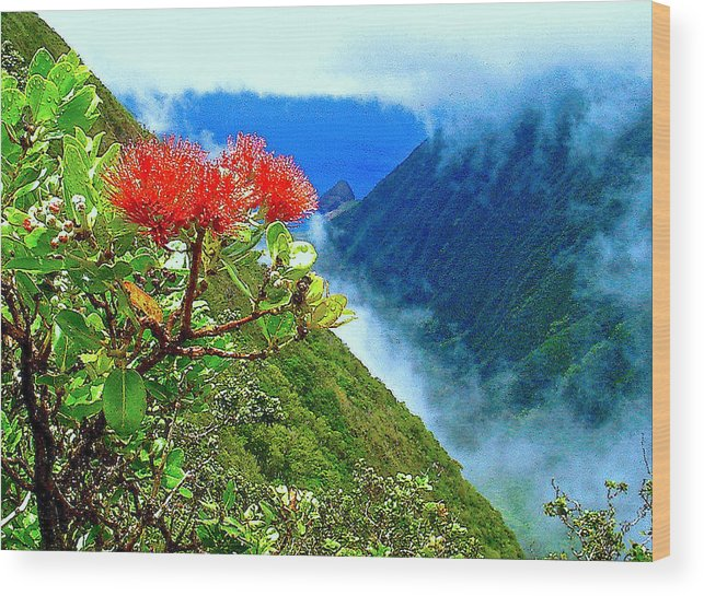 Ohia Lehua Wood Print featuring the photograph Peles Flower by James Temple