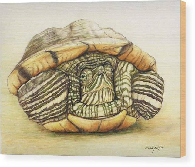 Turtle Wood Print featuring the painting Slow Retreat by Charlotte Yealey