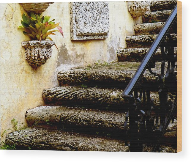 Landscape Wood Print featuring the photograph Stairs To Life by Patricia Awapara