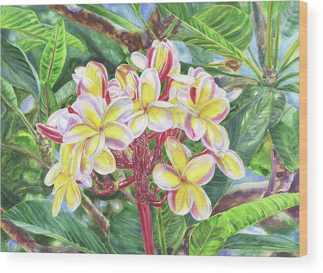 Jenny Wood Print featuring the painting Summertime Kauai Island Plumeria Watercolor By Jenny Floravita by Jenny Floravita