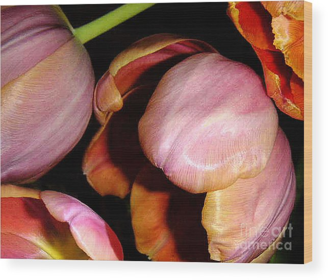 Nature Wood Print featuring the photograph Tulips In The Shadows by Lucyna A M Green