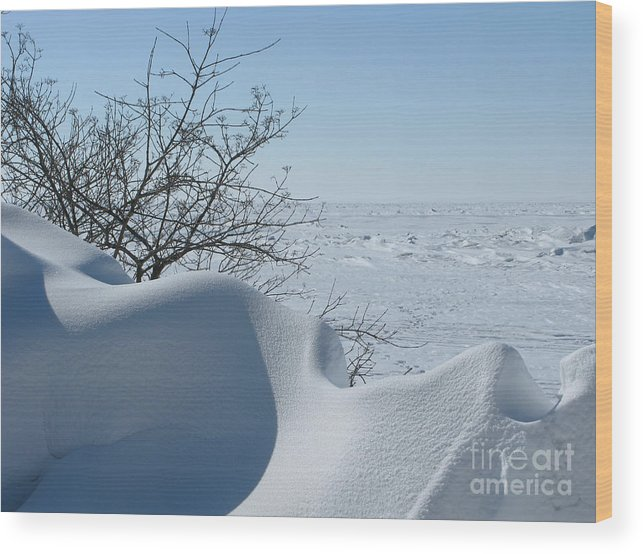 Winter Wood Print featuring the photograph A Gentle Beauty by Ann Horn