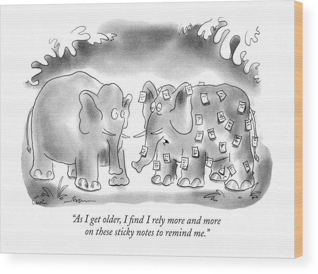 Animals Wood Print featuring the drawing As I Get Older by Arnie Levin