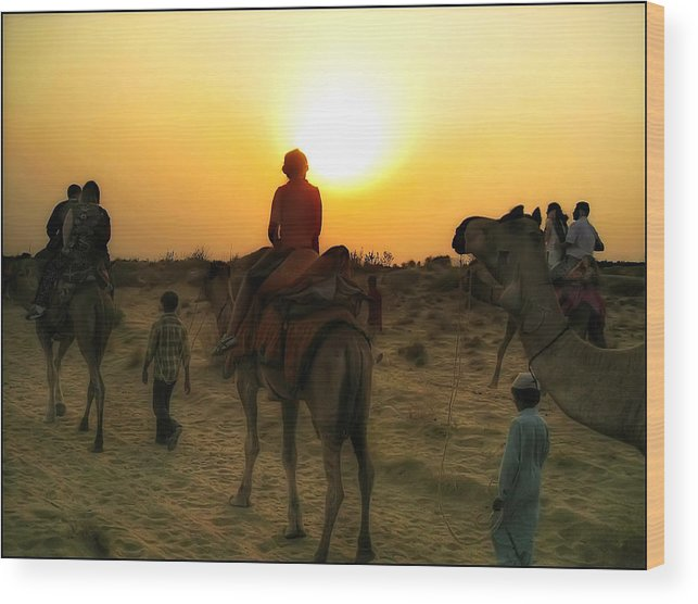 India Wood Print featuring the photograph Camel Trek by Richard Vinson