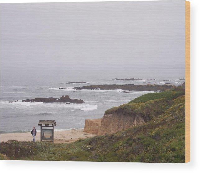 Coast Wood Print featuring the photograph Coastal Scene 7 by Pharris Art