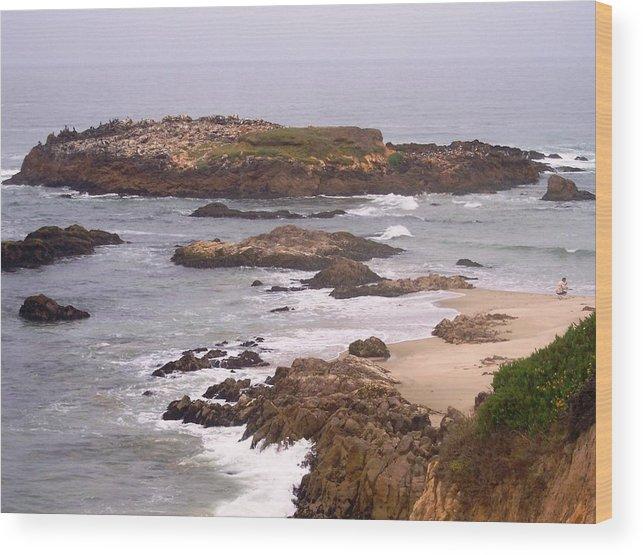 Coast Wood Print featuring the photograph Coastal Scene 9 by Pharris Art