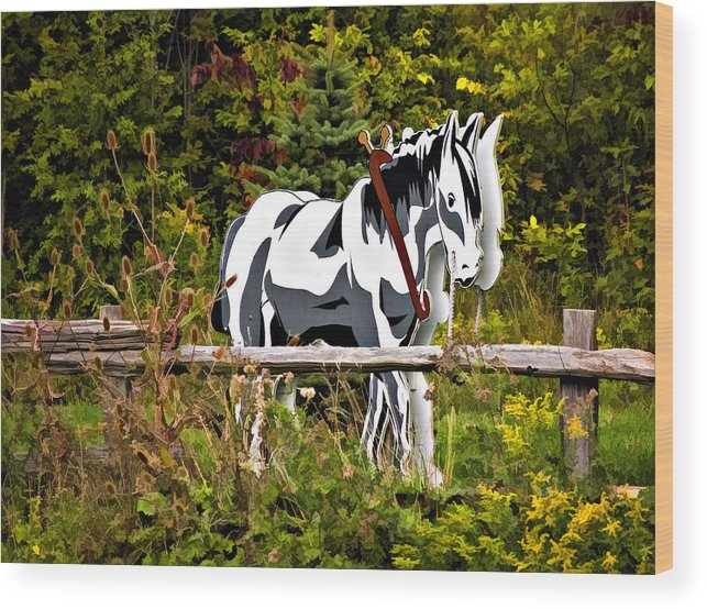 Horse Wood Print featuring the photograph Double Take by Steve Harrington