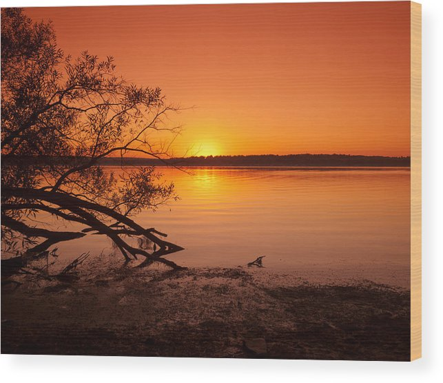 Chautauqua Wood Print featuring the photograph Evening Glow by At Lands End Photography