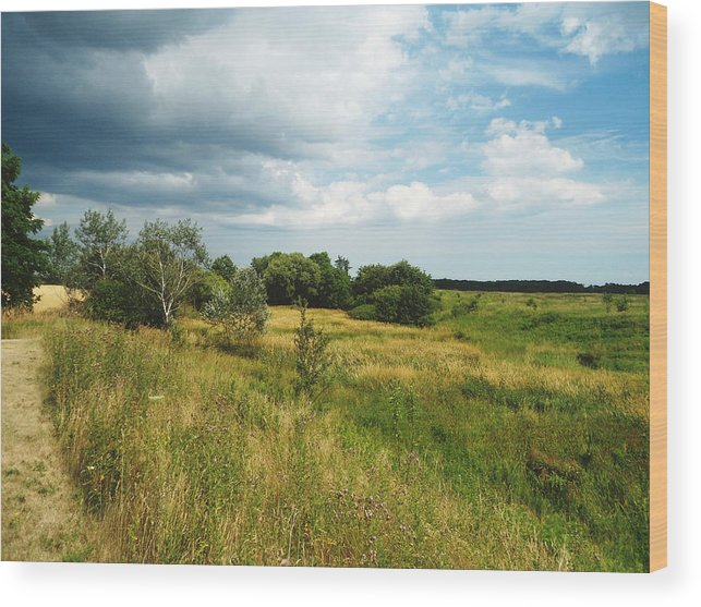 Landscape Wood Print featuring the photograph Field And Sky by Chloe Shackelton