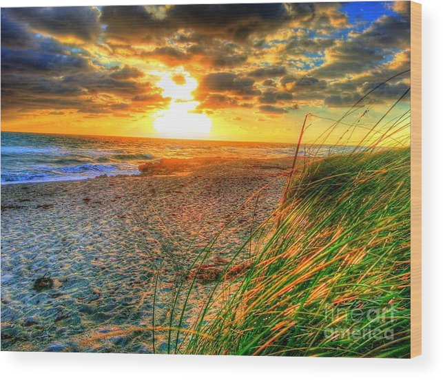 Seascape Wood Print featuring the photograph Flowing Grasses by Rocky Fikki