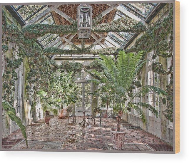 Greenhouse Wood Print featuring the photograph Greenhouse Splendor by Elin Mastrangelo