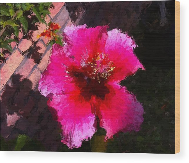 Red Wood Print featuring the photograph Hibiscus In The Sun by Lyn Pacific