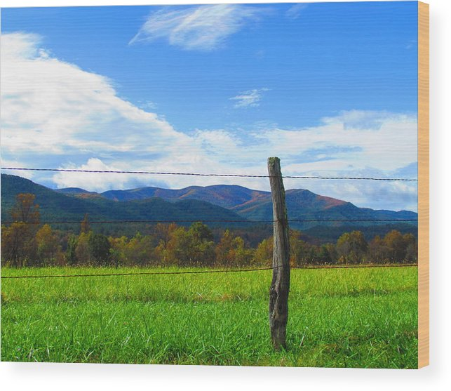 Landscape Wood Print featuring the photograph In The Cove by Teresa Hughes