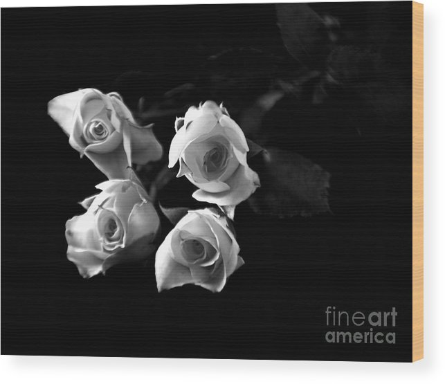 Roses Wood Print featuring the photograph Miniature Roses Black And White by Robin Lynne Schwind