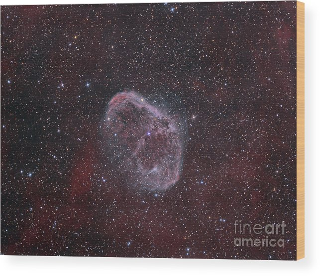 Night Wood Print featuring the photograph Ngc 6888, The Crescent Nebula by Reinhold Wittich