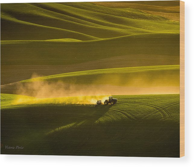 2014 Wood Print featuring the photograph Working The Fields In The Palouse by Victoria Porter