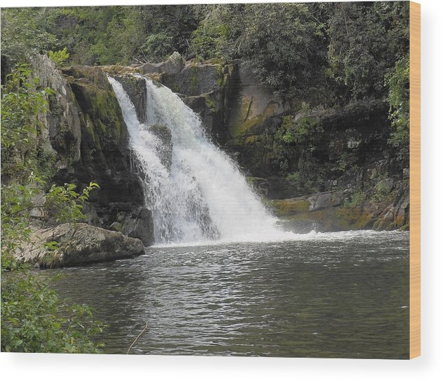 Abrams Falls Wood Print featuring the photograph Abrams Falls by Linda Labadorf