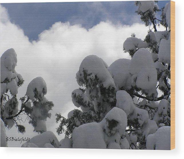 Sky Wood Print featuring the photograph Amazing Arizona Winter Skies by Sylvia Bielefeldt