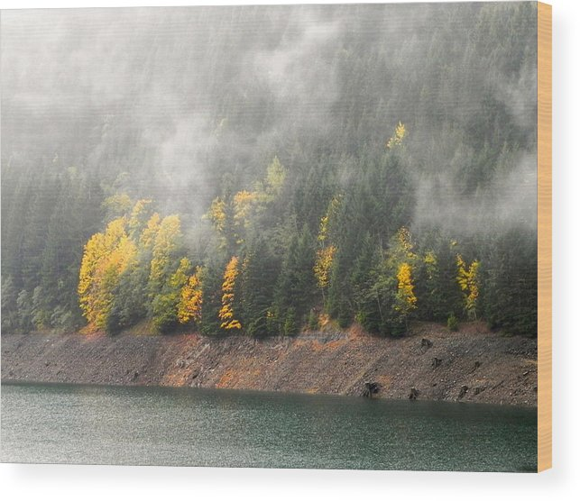 Fall Wood Print featuring the photograph Fall At The Lake 2 by Linda Hutchins