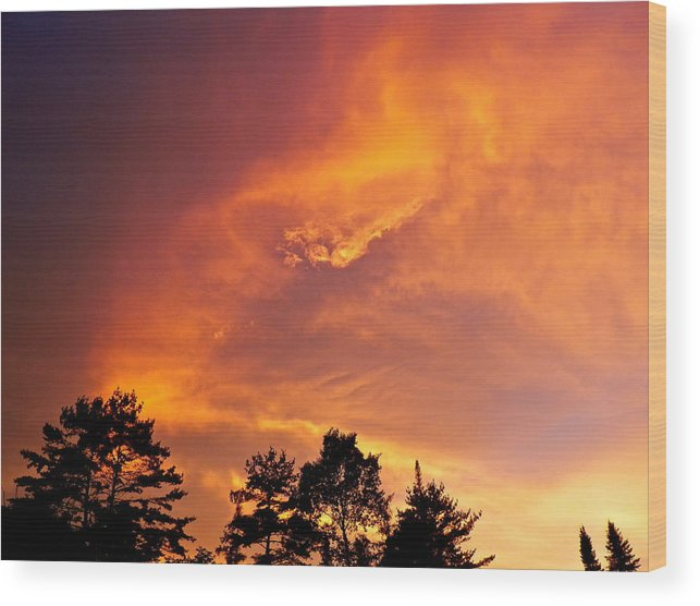 Natures Splender Wood Print featuring the photograph Golden Rays by Gloria Warren