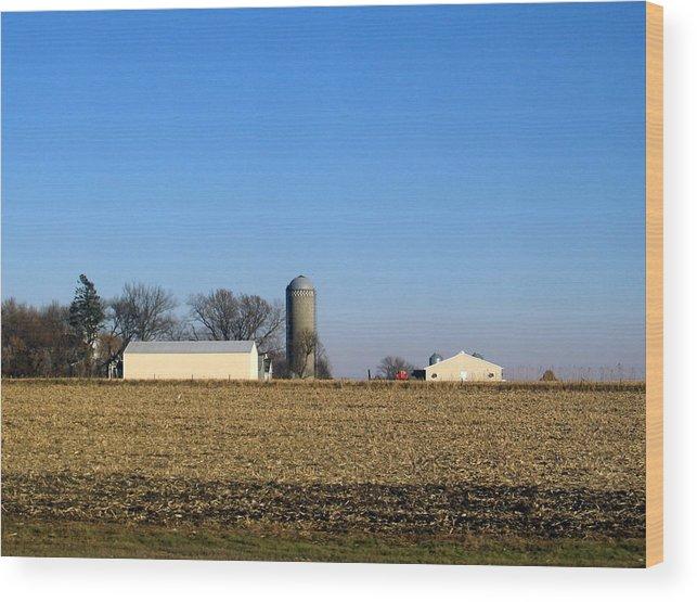 Iowa Wood Print featuring the photograph Iowa Landscape Vi by David Ritsema