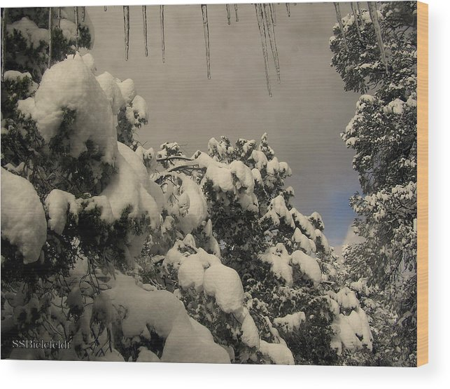 Icicles Wood Print featuring the photograph Springtime Icicles by Sylvia Bielefeldt