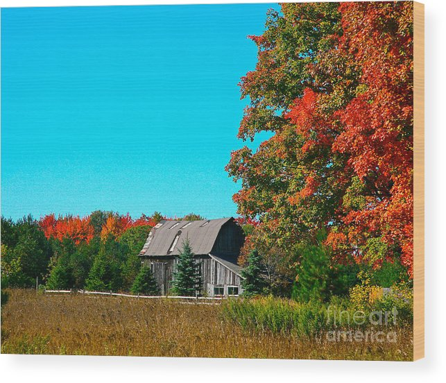 Old Barn Wood Print featuring the photograph Old Barn In Fall Color by Robert Pearson