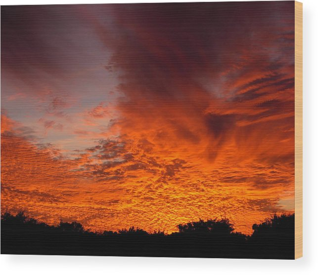 Sky Wood Print featuring the photograph Fire In The Sky by Amanda Vouglas