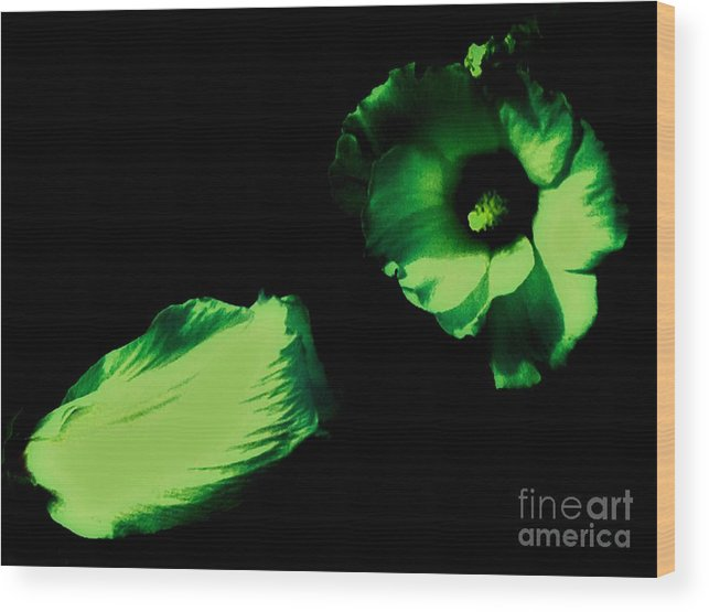 Lime/green Wood Print featuring the photograph Green With Envy by Debra Lynch