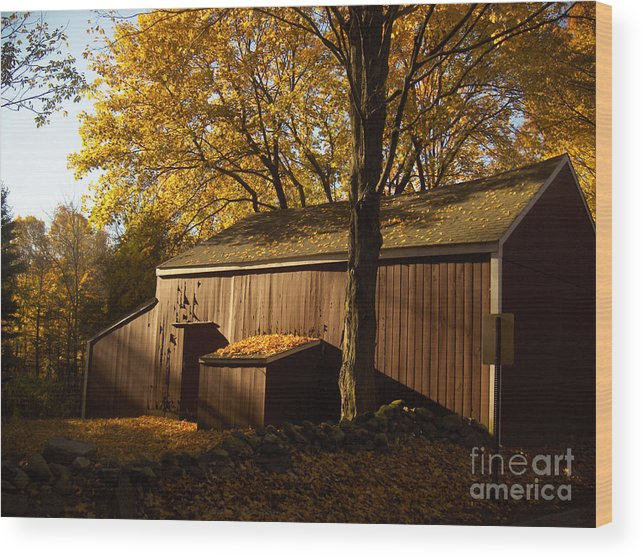 Barn Wood Print featuring the photograph Red Barn At Dawn by Joshua Francia