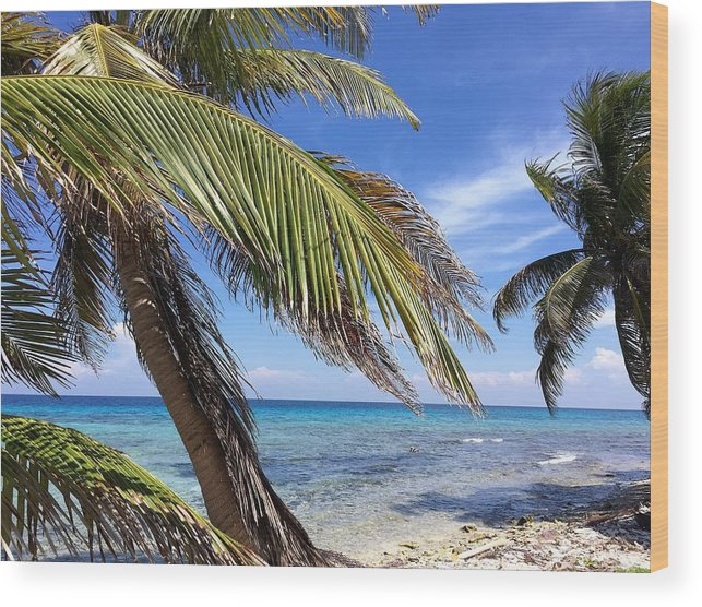 Beach Wood Print featuring the photograph Laughing Bird Caye by Julia Breheny