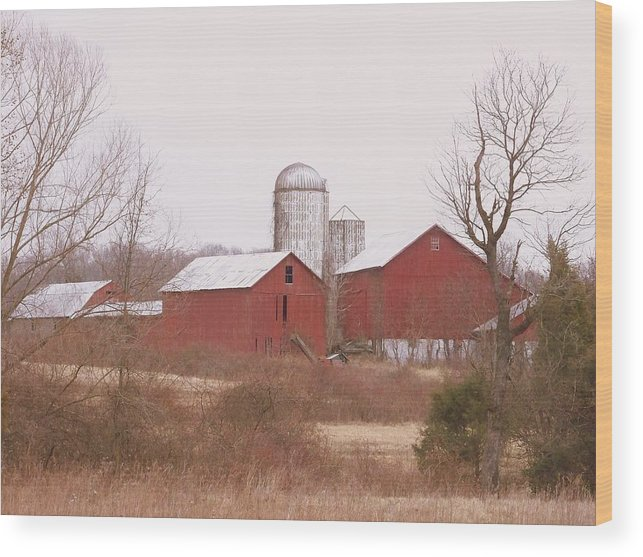 Farms Wood Print featuring the photograph 519 Farm by Amanda Vouglas