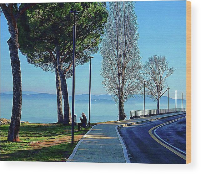 Landscape Wood Print featuring the photograph Alone In Beauty by Dorothy Berry-Lound