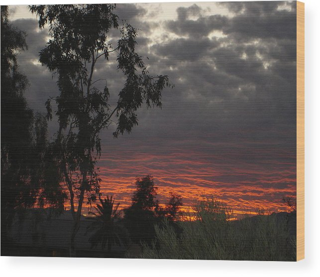 Landscape Wood Print featuring the photograph Arizona Sunset II by Lessandra Grimley