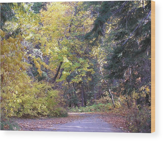 Autumn Photographs Wood Print featuring the photograph Autum Colors by Louise Magno