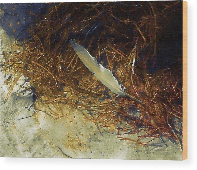 Beach Wood Print featuring the digital art Beach Feather by Robert Bissett