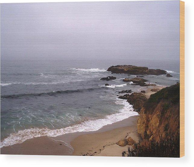 Coast Wood Print featuring the photograph Coastal Scene 5 by Pharris Art
